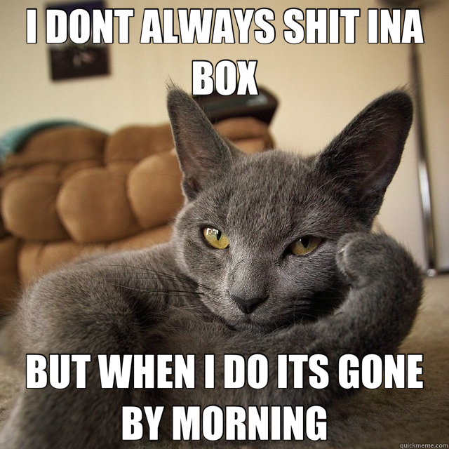 I DONT ALWAYS SHIT INA BOX BUT WHEN I DO ITS GONE BY MORNING