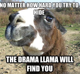 7fd74c76eee830004c96304d355752e11d79a27152c6744778ea9c50fb9ac3f4 no matter how hard you try to hide the drama llama will find you