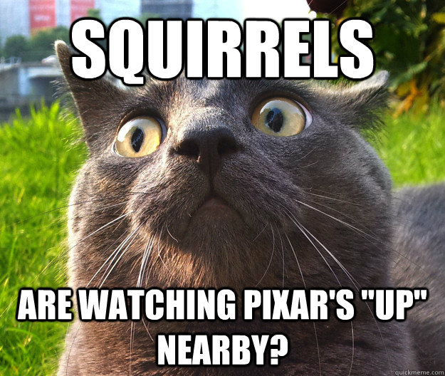 Squirrels Are watching Pixar's