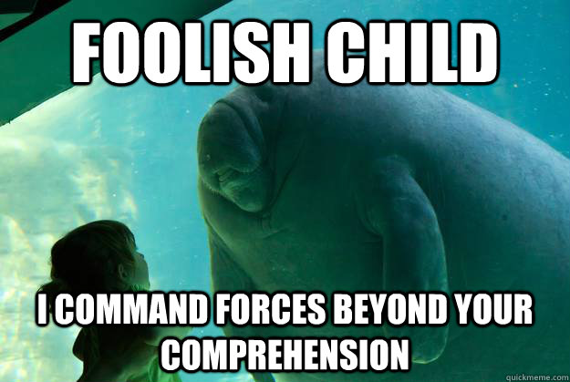 foolish child  i command forces beyond your comprehension - foolish child  i command forces beyond your comprehension  Overlord Manatee