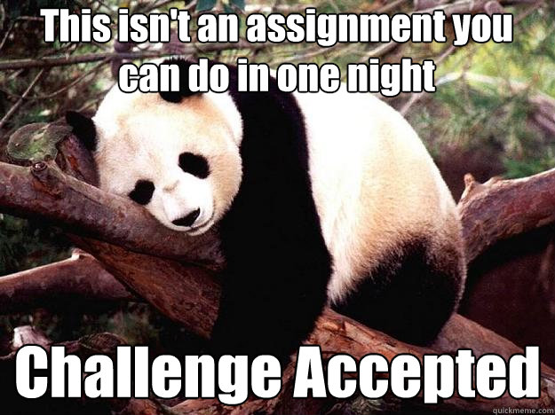 This isn't an assignment you can do in one night Challenge Accepted  Procrastination Panda