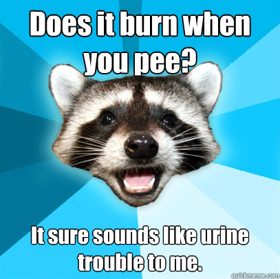 Does it burn when you pee? It sure sounds like urine trouble to me. - Does it burn when you pee? It sure sounds like urine trouble to me.  Lame Pun Coon