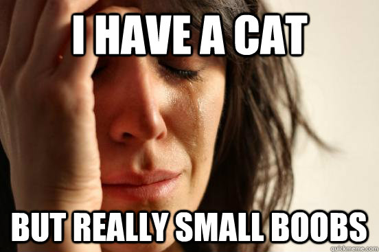 I have a cat but really small boobs - I have a cat but really small boobs  First World Problems
