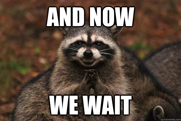AND NOW WE wait  - AND NOW WE wait   Evil Plotting Raccoon