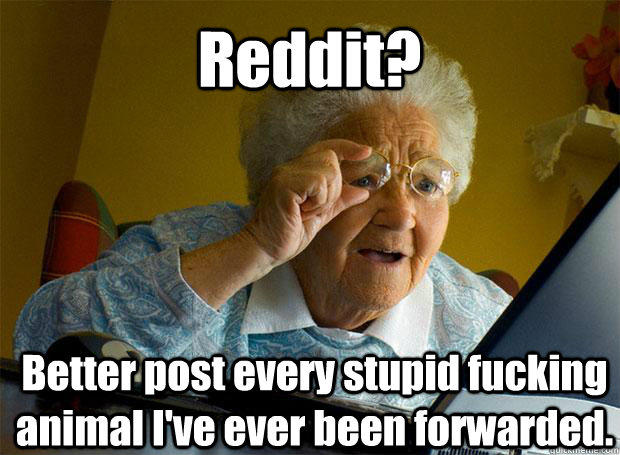 Reddit? Better post every stupid fucking animal I've ever been forwarded.    - Reddit? Better post every stupid fucking animal I've ever been forwarded.     Grandma finds the Internet