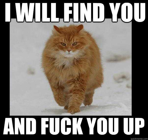 The dont fuck with this cat