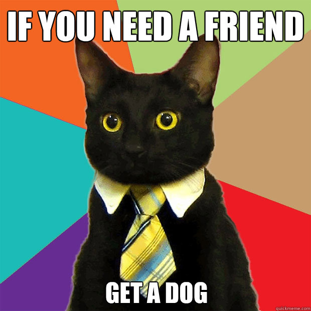 If you need a friend  get a dog - If you need a friend  get a dog  Business Cat