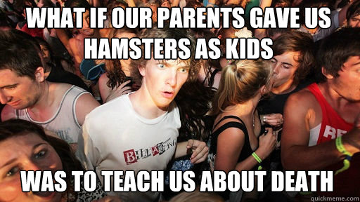 What if our parents gave us hamsters as kids  Was to teach us about death - What if our parents gave us hamsters as kids  Was to teach us about death  Sudden Clarity Clarence
