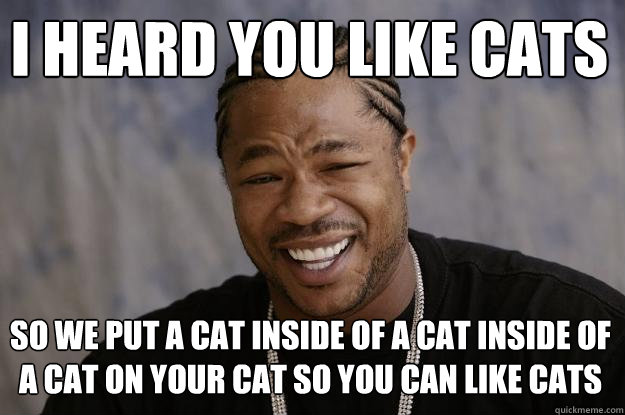 I heard you like cats So we put a cat inside of a cat inside of a cat on your cat so you can like cats  Xzibit meme