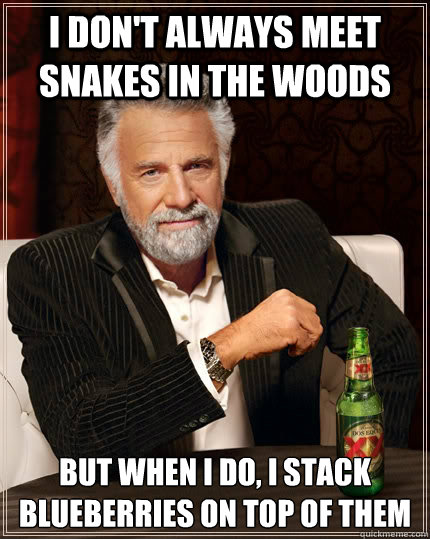 I don't always meet snakes in the woods but when I do, I stack blueberries on top of them - I don't always meet snakes in the woods but when I do, I stack blueberries on top of them  The Most Interesting Man In The World