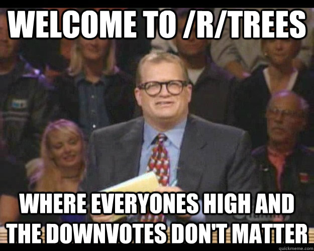 Welcome to /r/trees Where everyones high and the downvotes don't matter