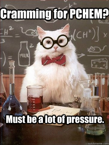 Cramming for PCHEM? Must be a lot of pressure. - Cramming for PCHEM? Must be a lot of pressure.  Chemistry Cat