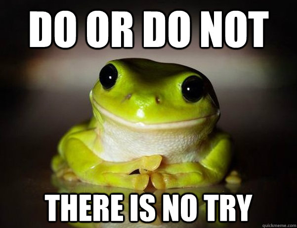 Do or Do not there is no try - Do or Do not there is no try  Fascinated Frog