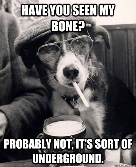 Have you seen my bone? Probably not, it's sort of underground. - Have you seen my bone? Probably not, it's sort of underground.  Hipster Dog