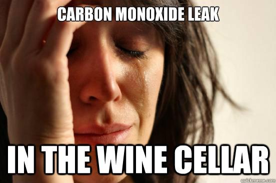 Carbon Monoxide Leak in the wine cellar - Carbon Monoxide Leak in the wine cellar  First World Problems