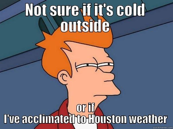 houston weather - NOT SURE IF IT'S COLD OUTSIDE OR IF I'VE ACCLIMATED TO HOUSTON WEATHER Futurama Fry