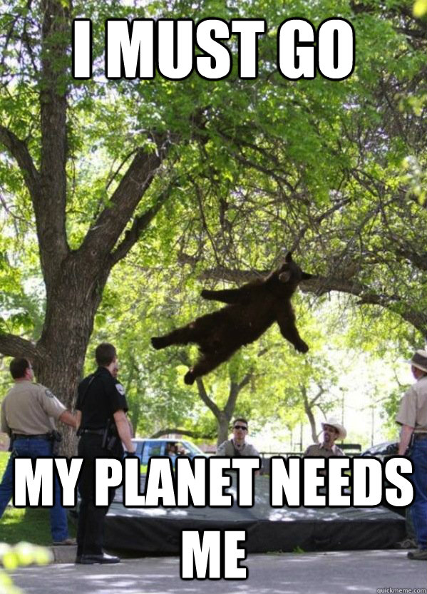I must go My planet needs me  i am a falling bear