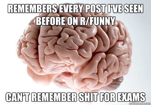 remembers every post i've seen before on r/funny can't remember shit for exams - remembers every post i've seen before on r/funny can't remember shit for exams  Scumbag Brain