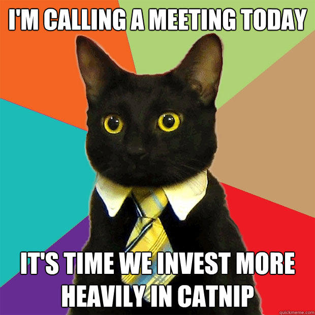 I'M CALLING A MEETING TODAY IT'S TIME WE INVEST MORE HEAVILY IN CATNIP - I'M CALLING A MEETING TODAY IT'S TIME WE INVEST MORE HEAVILY IN CATNIP  Business Cat