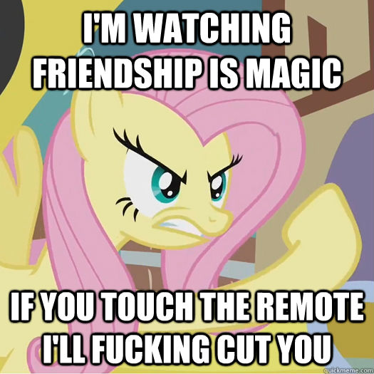 I'm watching Friendship is Magic if you touch the remote i'll fucking cut you - I'm watching Friendship is Magic if you touch the remote i'll fucking cut you  Flipoff Pony