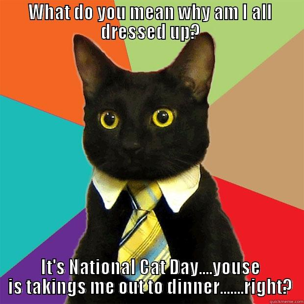 80fde0c2a55ae0adb7a8b3b110562fcfe61fb427255557e964fd2139ccce58f3 national cat day dinner out quickmeme