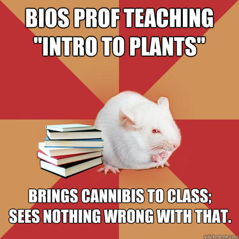Bios prof teaching