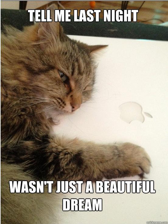 Tell me last night Wasn't just a beautiful dream  Romantic Mac Cat