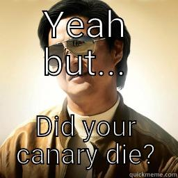 YEAH BUT... DID YOUR CANARY DIE? Mr Chow