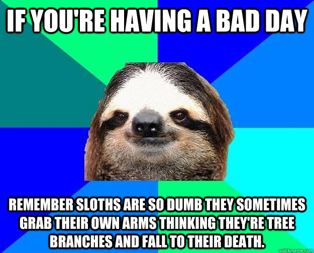 If you're having a bad day remember sloths are so dumb they sometimes grab their own arms thinking they're tree branches and fall to their death.  - If you're having a bad day remember sloths are so dumb they sometimes grab their own arms thinking they're tree branches and fall to their death.   Socially Lazy Sloth