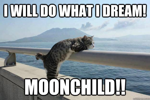 I Will Do What I Dream! MOONCHILD!!