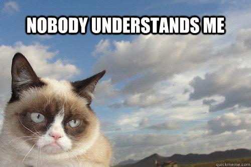 Nobody understands me - Nobody understands me  sad grumpy cat