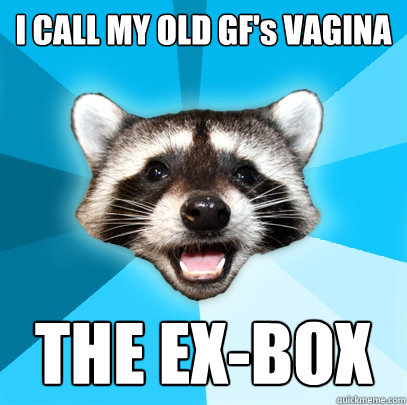 I CALL MY OLD GF's VAGINA  THE EX-BOX - I CALL MY OLD GF's VAGINA  THE EX-BOX  Lame Pun Coon