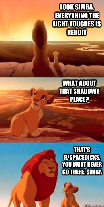 look simba, everything the light touches is reddit what about that shadowy place? that's r/spacedicks, you must never go there, simba