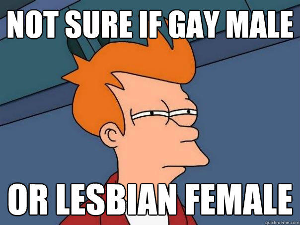 Not sure if gay male Or lesbian female - Not sure if gay male Or lesbian female  Futurama Fry
