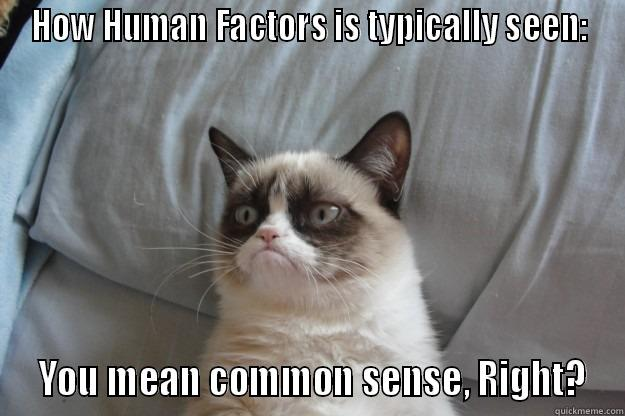 HOW HUMAN FACTORS IS TYPICALLY SEEN:  YOU MEAN COMMON SENSE, RIGHT? Grumpy Cat