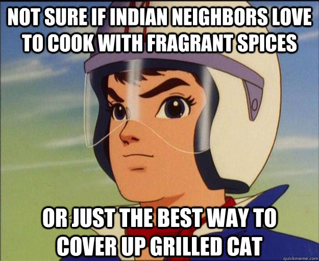 spices or just the best way to cover up grilled cat speed racist