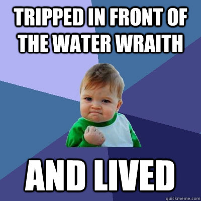 tripped in front of the water wraith and lived   Success Kid