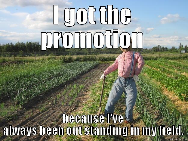I GOT THE PROMOTION BECAUSE I'VE ALWAYS BEEN OUT STANDING IN MY FIELD. Scarecrow