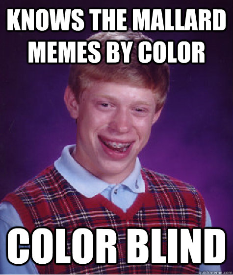 Knows the mallard memes by color Color blind - Knows the mallard memes by color Color blind  Bad Luck Brian