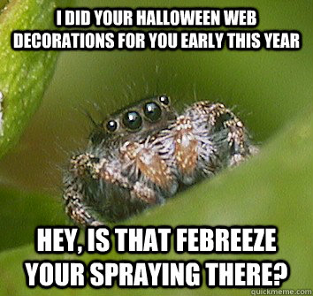 I did your Halloween web decorations for you early this year Hey, is that febreeze your spraying there? - I did your Halloween web decorations for you early this year Hey, is that febreeze your spraying there?  Misunderstood Spider