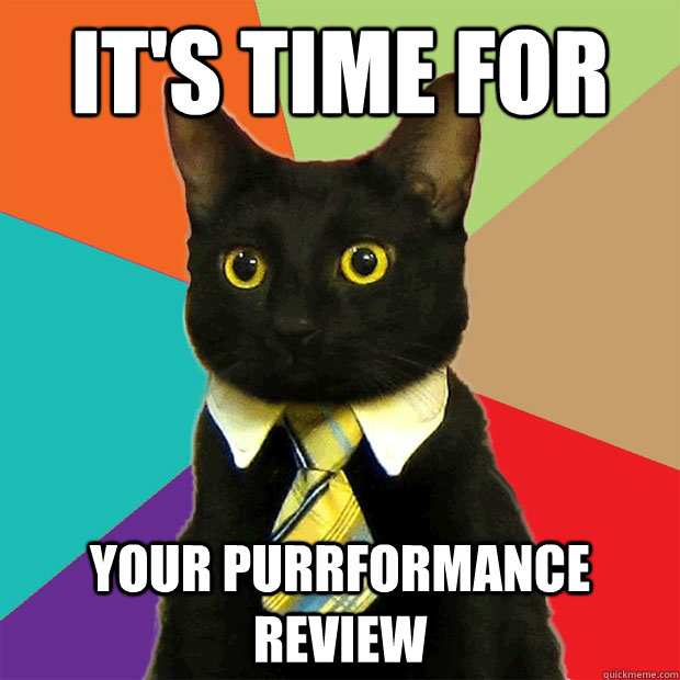It's time for your purrformance review - It's time for your purrformance review  Business Cat