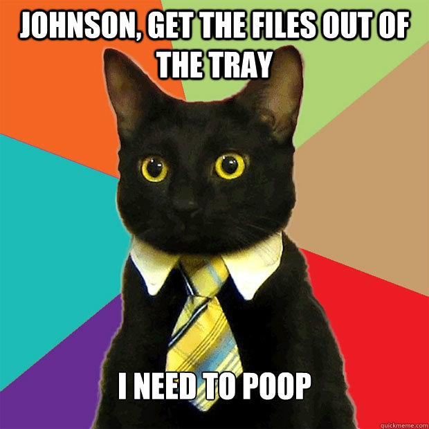 Johnson, Get the files out of the tray I need to poop - Johnson, Get the files out of the tray I need to poop  Business Cat