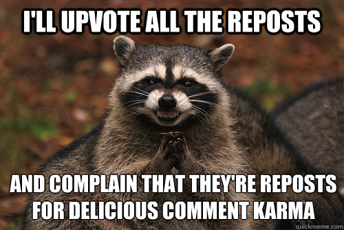 I'LL UPVOTE ALL THE REPOSTS AND COMPLAIN THAT THEY'RE REPOSTS FOR DELICIOUS COMMENT KARMA - I'LL UPVOTE ALL THE REPOSTS AND COMPLAIN THAT THEY'RE REPOSTS FOR DELICIOUS COMMENT KARMA  Insidious Racoon 2
