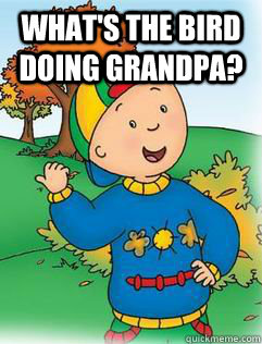 what's the bird doing grandpa?   Swag Like Caillou