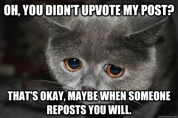 Oh, you didn't upvote my post? That's okay, maybe when someone reposts you will. - Oh, you didn't upvote my post? That's okay, maybe when someone reposts you will.  Sad Reddit Cat