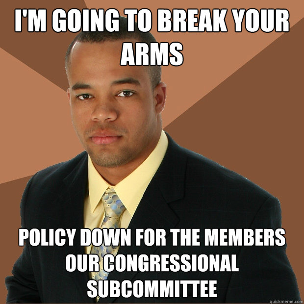 i'm going to break your arms policy down for the members our congressional subcommittee - i'm going to break your arms policy down for the members our congressional subcommittee  Successful Black Man