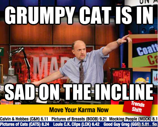 GRUMPY CAT IS IN SAD ON THE INCLINE - GRUMPY CAT IS IN SAD ON THE INCLINE  Mad Karma with Jim Cramer