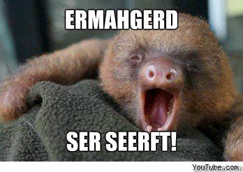 ermahgerd ser seerft! - ermahgerd ser seerft!  ermahgerd sloth
