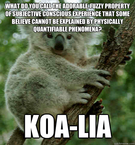 What do you call the adorable, fuzzy property of subjective conscious experience that some believe cannot be explained by physically quantifiable phenomena? Koa-lia  Property Dualism Puns