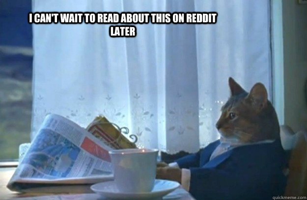 I can't wait to read about this on reddit later - I can't wait to read about this on reddit later  Sophisticated Cat